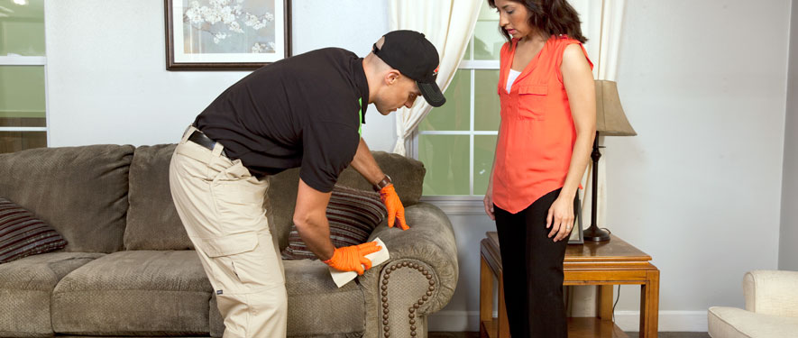 Berwyn, IL carpet upholstery cleaning