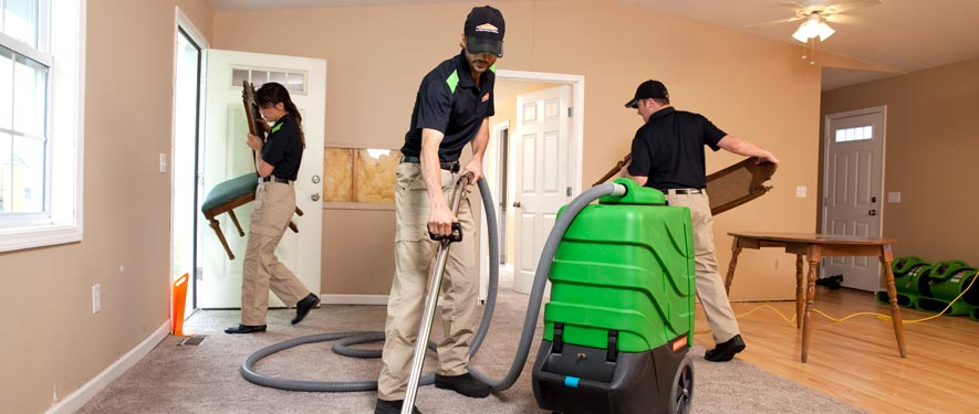 Berwyn, IL cleaning services